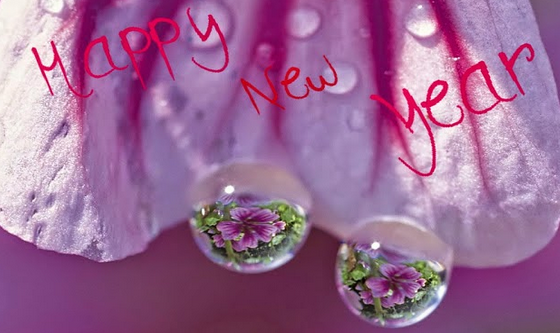 2015 New Year Super Images for Facebook & Whatsapp Free Pictures Download Wallpaper Profile Pics 2014 Year End Good Bye Status