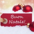 give a great christmas wish in italian