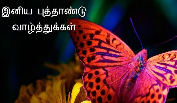 best Happy New Year Wishes Quotes in tamil font language greetings wallpapers images sms nice best
