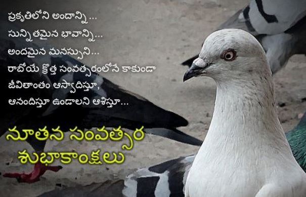 best happy new year wishes in telugu language font images greetings cards facebook whatsapp