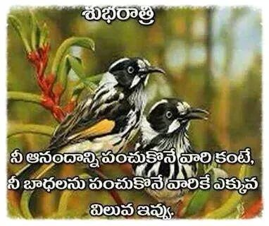 good night telugu whatsapp images pictures