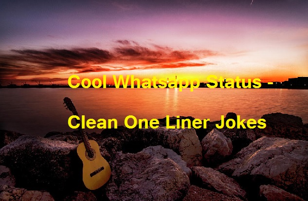 Cool Whatsapp Status - Clean One Liner Jokes