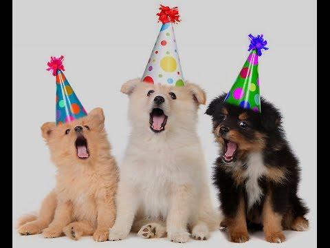 Unique Happy Birthday Song