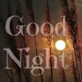 good night card