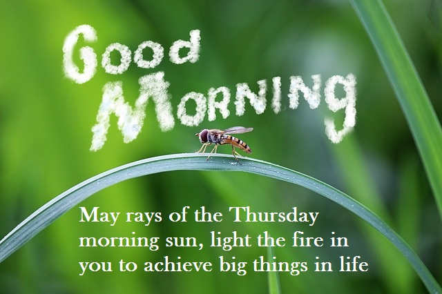 Good Morning Card with Message for thursday