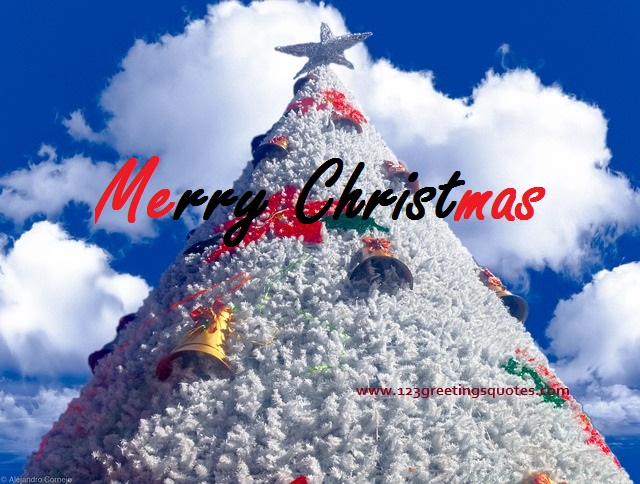 Merry Christmas Greeting Quote
