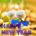 New Year 2016 Greetings for family