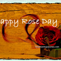 Happy Rose Day Date Wishes Messages Images in Hindi English Quotes
