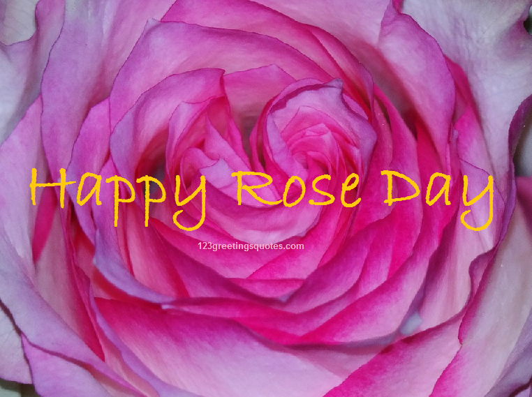 Happy Rose Day  Images in Hindi greetings