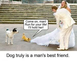 Best Funny Trolls For Friends